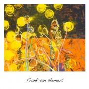 Frank van Hemert_news